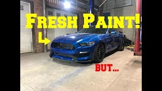 Rebuilding A Wrecked SUPERCHARGED Mustang GT 5.0 [part 10]