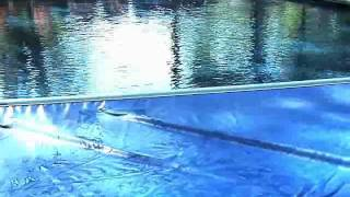 Factory Trained Pool Cover Technicians Holbrook Ny Solar Pool Enclosures Of Ny Inc