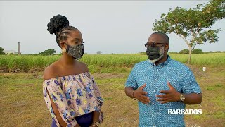 Exploring and Understanding Newton Slave Burial Ground