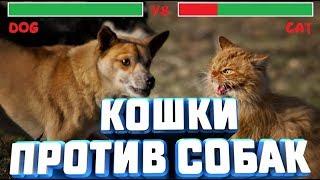 """Выпуск 1 """"Кошки против Собак"""""""