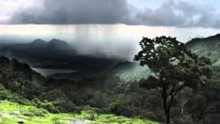 Vídeo 6 de Darrell Evans
