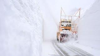 八甲田・十和田ゴールドラインに「雪の回廊」 除雪進む 青森