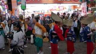 2012 かわさき阿波踊り「下北沢 やっとこ連」さん 銀柳街