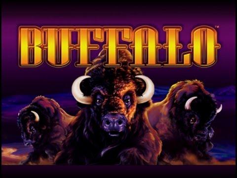 Buffalo Slot Bonus $4 Max Bet *CANADIAN Handpay* at Woodbine