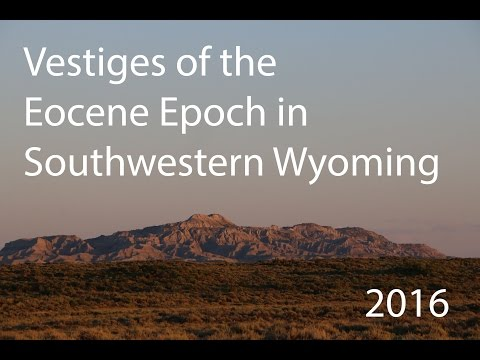 Trip To Wyoming To Collect Eocene Fossils