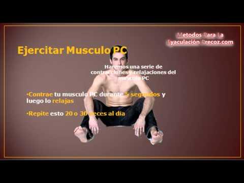 ejercicios del musculo pubocoxigeo