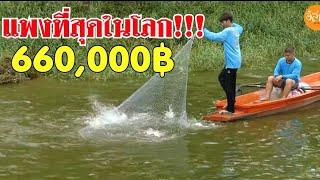 หว่านแหครั้งประวัติศาสตร์ บัตรแพงที่สุดในโลก เหมาบ่อปลาปึ่งเทโพ 660,000บาท แหปากละ 44,000 EP.1