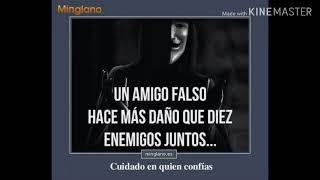 видео Frases Para Amigos Falsos смотреть онлайн