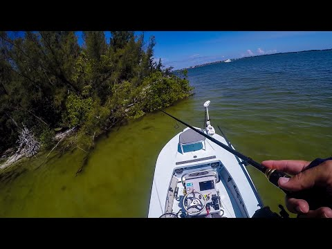 EPIC Day Saltwater Flats Fishing
