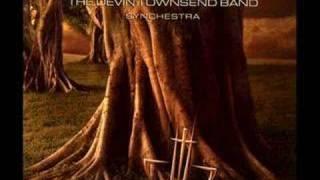The Devin Townsend Band - Triumph