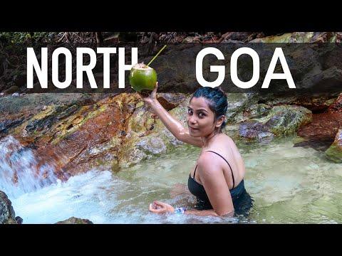 North Goa - Top Beaches to Visit - Savvy Fernweh