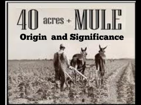 40 Acres and a Mule: Origin And Significance