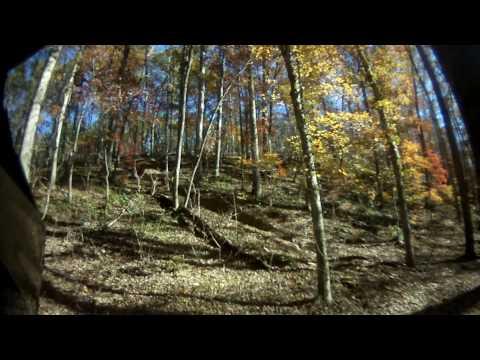 Carolina Adventure World Grizzly Hill Crash
