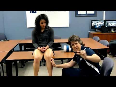 Sports Medicine 04 07 2016 The Examination of the Knee