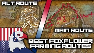 Best Foxflower Farming Route (still good with flying) - Legion Gold Farming 7.2 with Herbalism