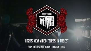 THE TiPS - BIRDS IN TREES VIDEO TEASER #2