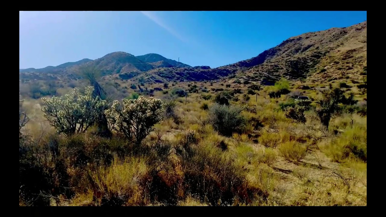360 View of 5 Acres Morongo Valley Property in San Bernardino, CA