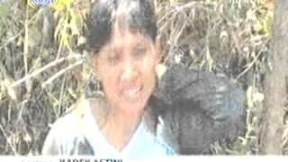 Video Sejumlah Wilayah Di Indonesia Masih Dalam Kekeringan - Berita Terbaru 7 November 2014 download MP3, 3GP, MP4, WEBM, AVI, FLV Oktober 2018