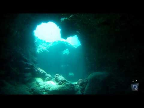 Scuba Diving At Shark's Cove, North Shore, Oahu, Hawaii - GoPro HD & Sony HDV