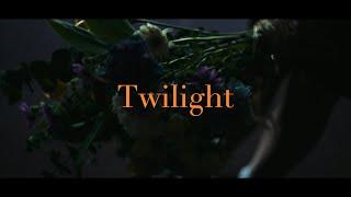 藤原さくら - Twilight (Music Video)