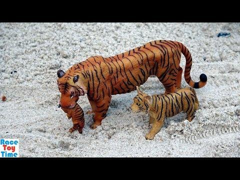 Animal Planet Wild Animals Transport Playset Fun Toys Video For Kids