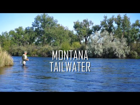 Montana Tailwater | Overcoming Challenging Conditions