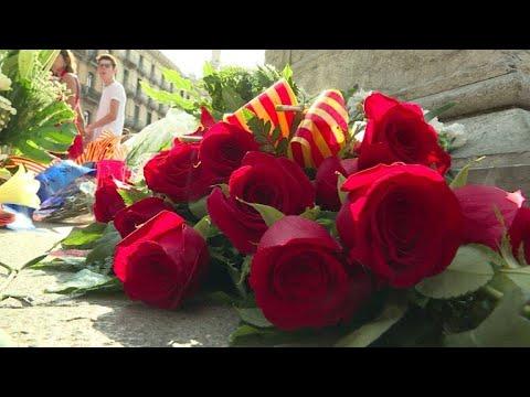 Flores contra a dor