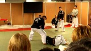 Korean Connection 2011 Paris   Hapkido Armlock projection 2