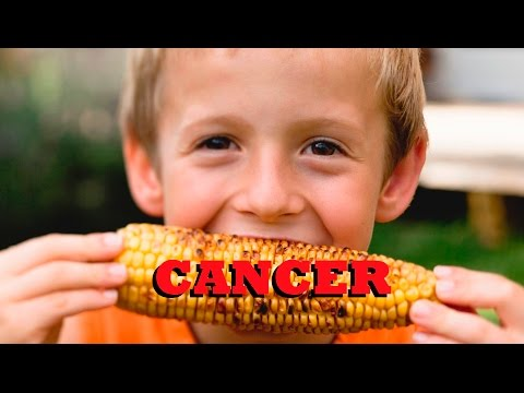 Undeniable Proof GMO Corn Causes Giant Tumors