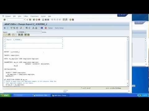 Beginners Guide - SAP ABAP Training - Selection Screens - Parameters