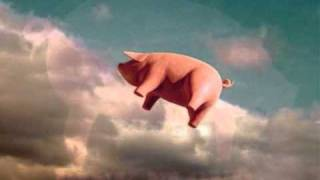 "Pink Floyd ""Pigs on the Wing"" Parts 1 & 2, with lyrics"