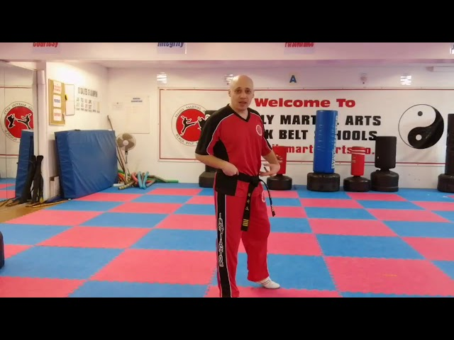 Mr Tandoh's 3 main principals to help make self defence martial arts easier to understand