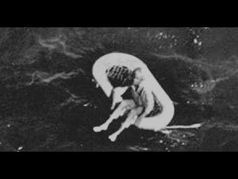 Смотреть В 1961 году ЭТУ ДЕВОЧКУ нашли дрейфующей В МОРЕ, а ПОЗЖЕ она РАССКАЗАЛА... онлайн