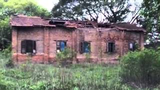 Download Video The hunted jungle MP3 3GP MP4