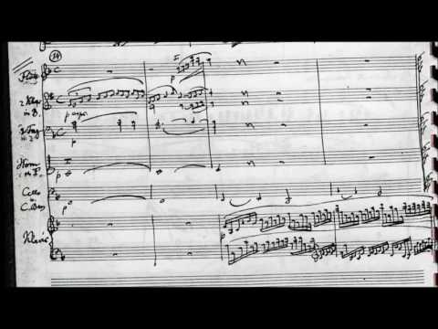 Julius Röntgen - Piano Concerto No. 6  in E minor (1929)