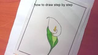 How to draw a cala lilly with basic shapes //drawing for beginners//@how to draw step by step