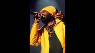 I - Wayne - Reggae Music - 2014