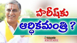 హరీష్కు ఆర్ధికమంత్రి ?   Thanneeru Harish Rao's finance minister?   Velugutv Exclusive