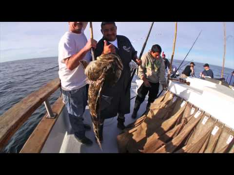 Lingcod Fishing on the Pacific Islander • San Miguel Island