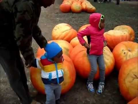 Pumpkin Patch and Ikea Grand opening!!