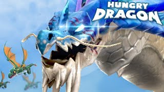 THE LAST OF THE LARGE DRAGONS!!! - Hungry Dragon Ep11