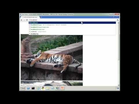 IIS Virtual Directory Vs. Application