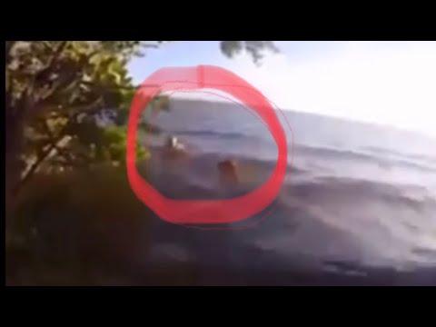 Graban A Sirena Real Cantando(Nuevo Video)