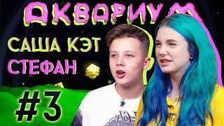 Download АКВАРИУМ #3 / САША КЭТ x СТЕФАН ( БОГАТЫЙ ШКОЛЬНИК ) Mp3 and Videos