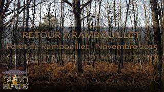 Bushcraft mouillé - Back in Rambouillet [Eng & FR sub]