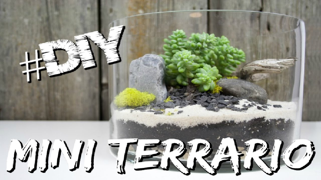 decorazione casa mini terraio youtube