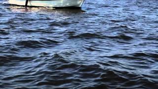 Sieneke - Dromen Alleen Maar Dromen Officile Videoclip