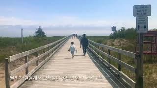 [??핼리팩스 일상] 레인보우 비치 | Rainbow beach