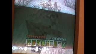 The Minecraft Griefing